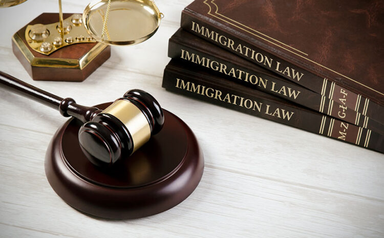 Important Things About Melbourne Law Firm and Immigration That You Should Know